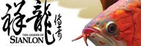 广水水族批发市场 广水水族馆 广水龙鱼
